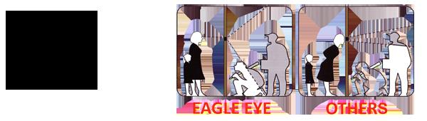 Eagle Eye มากกว่าตาแมว ช่องมองผ่านประตู รูมองผ่านประตู